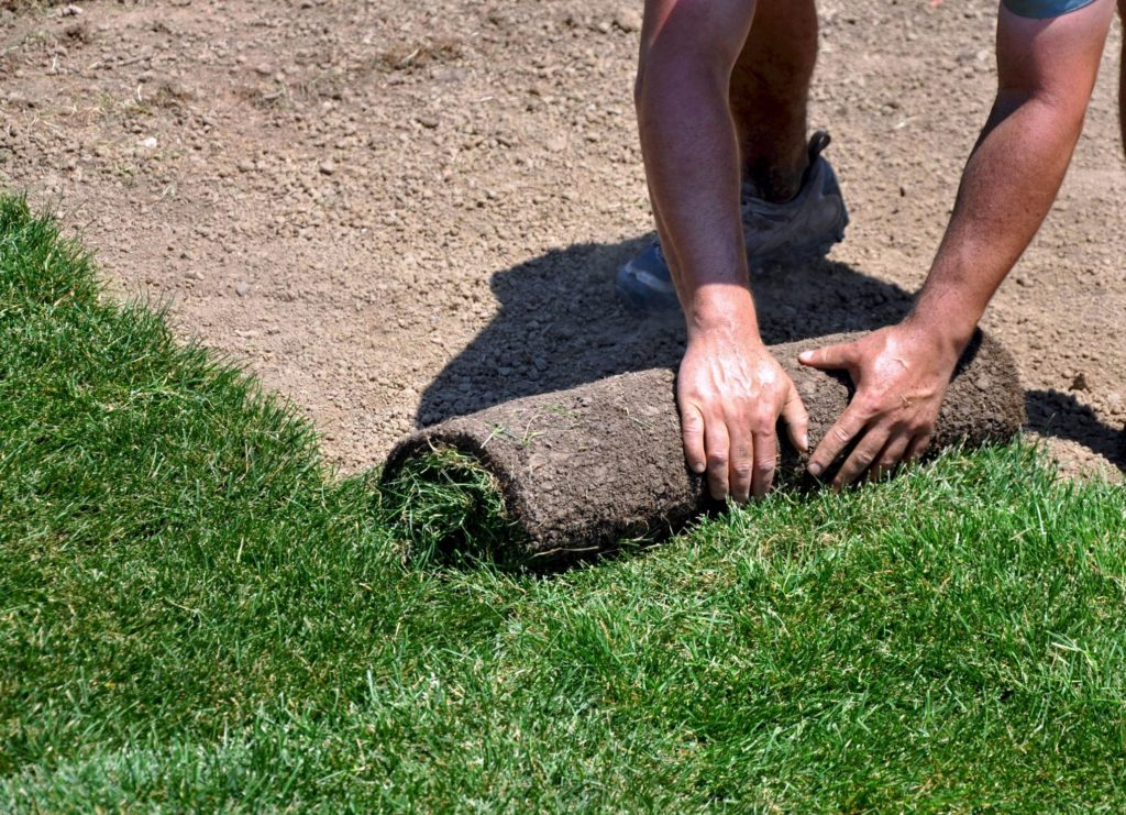 landscaping sod artificial turf installation