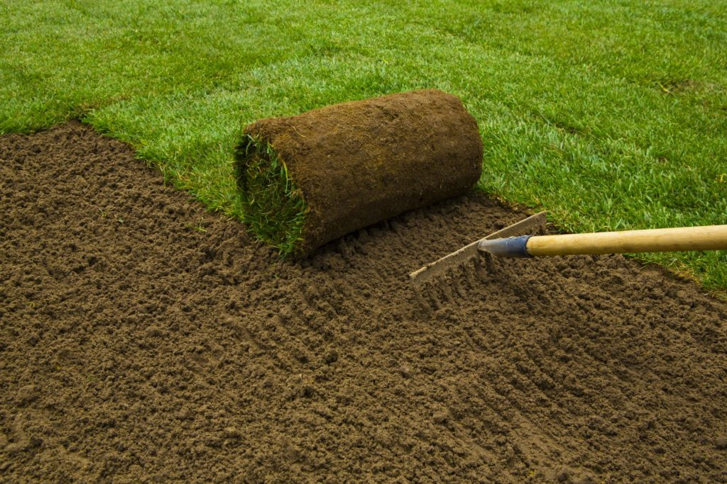 landscaper landscaping doing sod installation